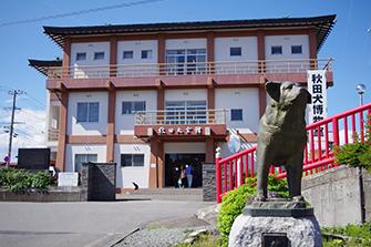 Akita Dog Museum