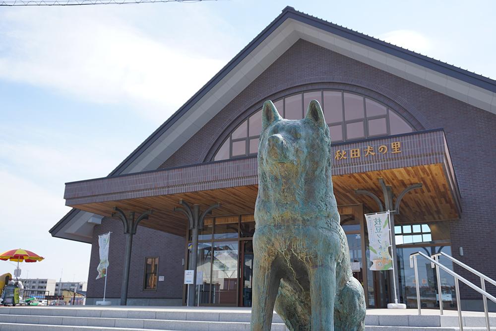 Akita Dog Visitor Center