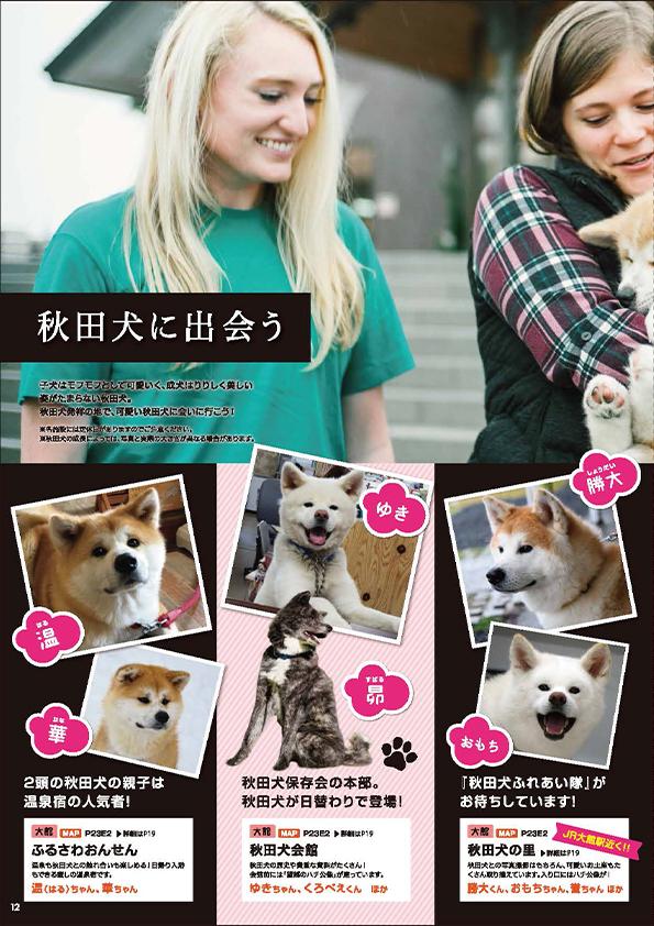 秋田犬に出会う(P12~P13)